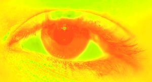 Eye Tracking Yellow